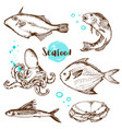 vintage hand drawn fish vector image