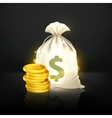 Moneybag and coin black vector image vector image
