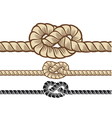 rope knot vector image vector image