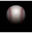 Baseball on Black Background vector image