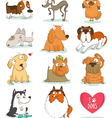 Set of cute dog characters vector image