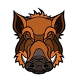 Head of boar mascot color design vector image