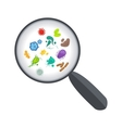 Bacteria and virus under magnifying glass vector image