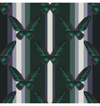 Seamless vertical retro pattern with butterfly vector image
