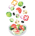 flying salad vector image