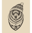 Bear hipster in knitted hat with pompom vector image vector image