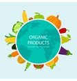 Fruits and Vegetables background Organic food vector image