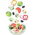 flying salad vector image