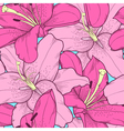 seamless background with pink lilies hand-drawing vector image