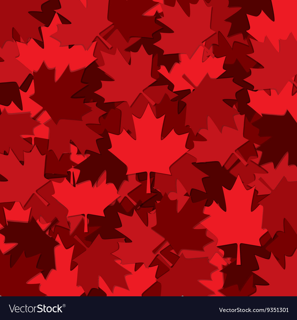 Canadian maple leaf scatter pattern in format vector