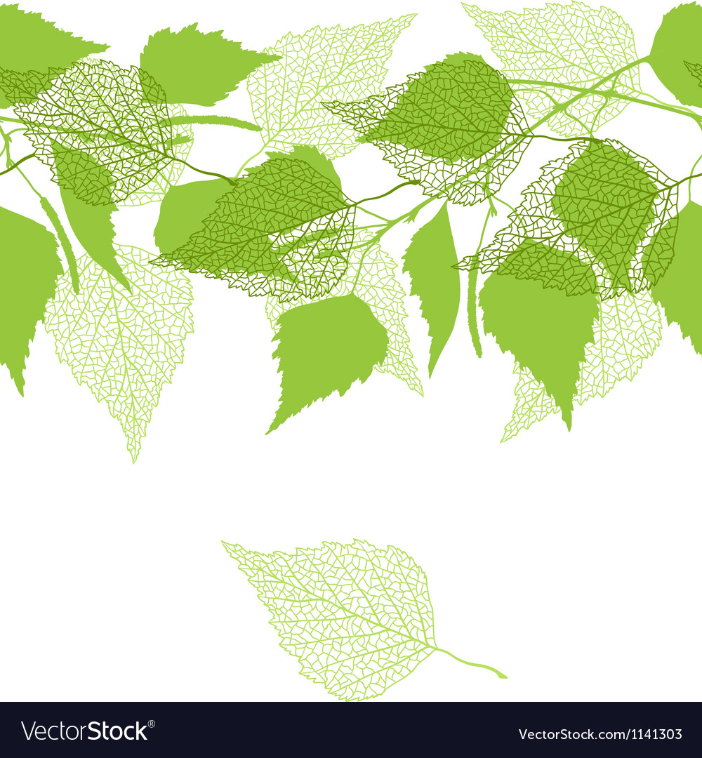 Seamless pattern with green birch leaves vector