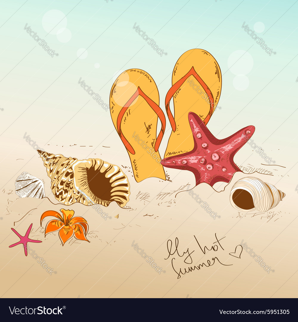 With seashells starfish and flip flops vector