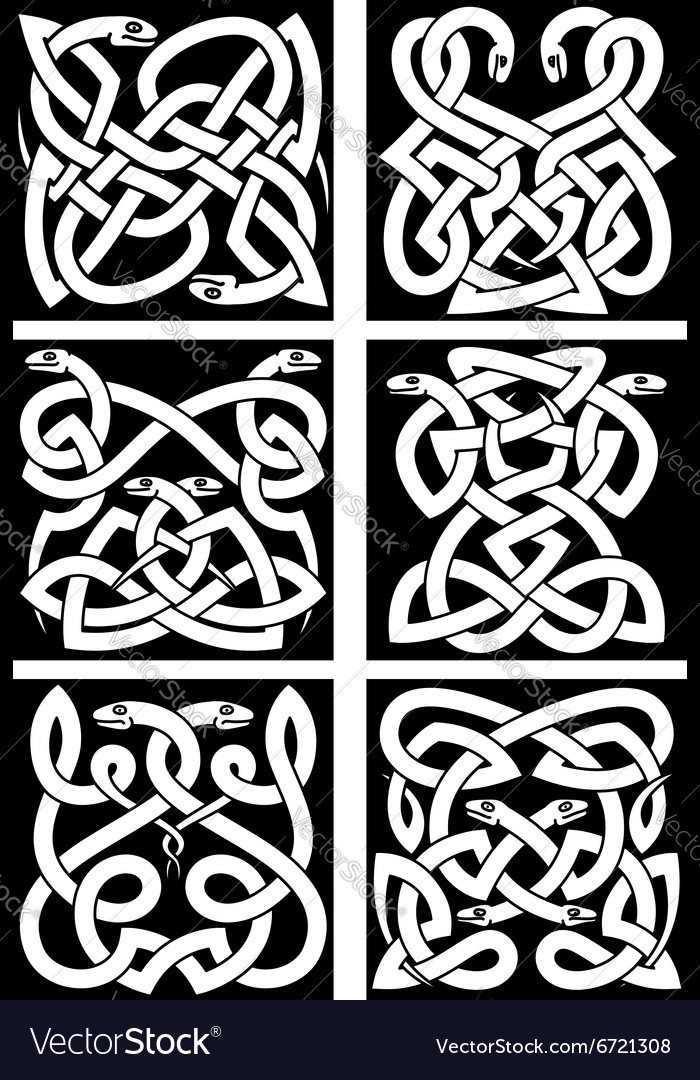 Celtic snakes knot patterns with tribal ornament vector