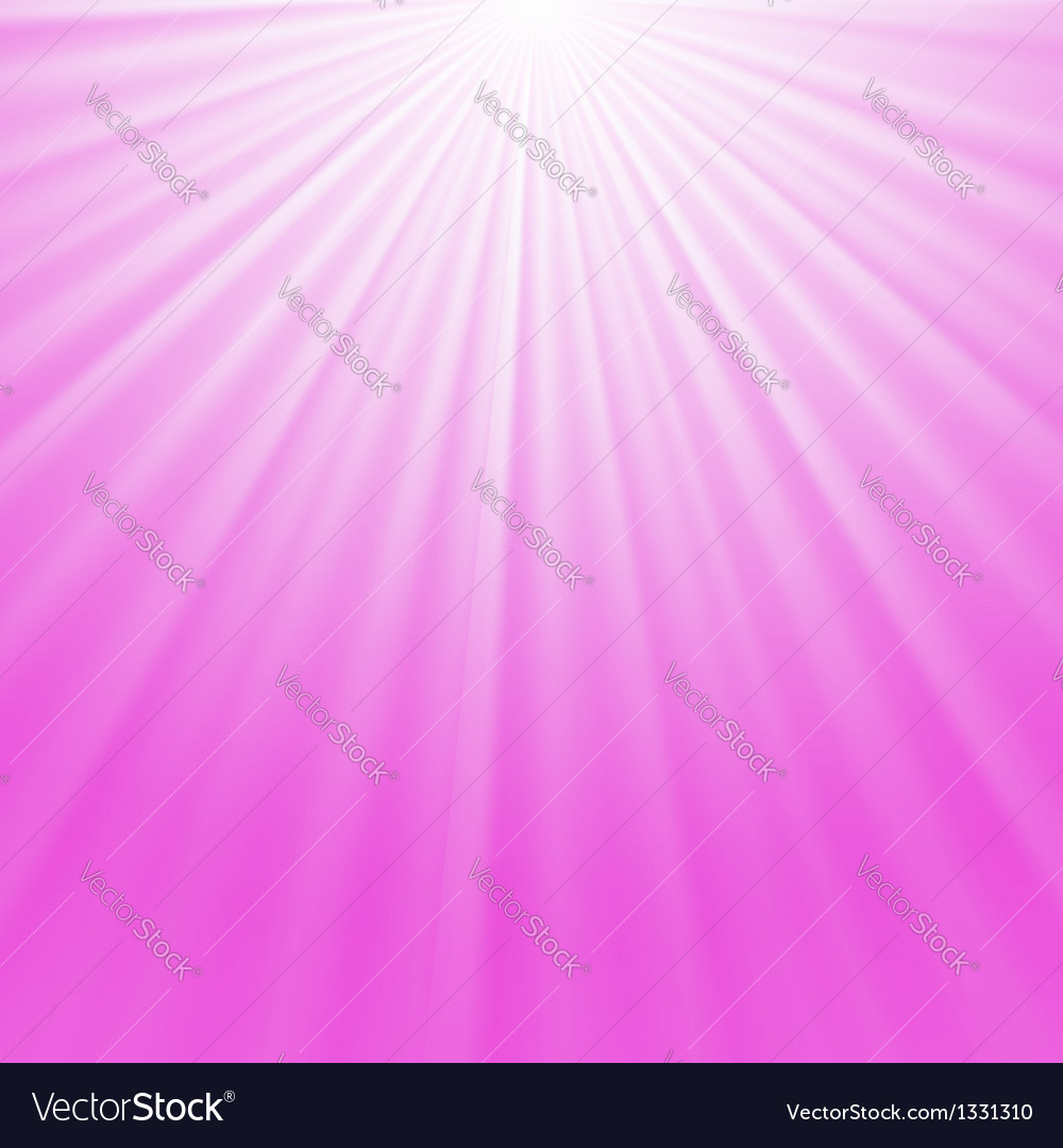 Pink rays background vector
