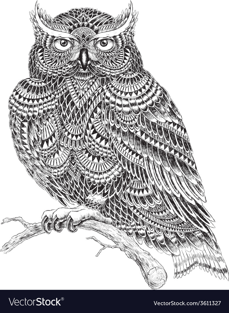 Hand drawn abstract pattern owl vector