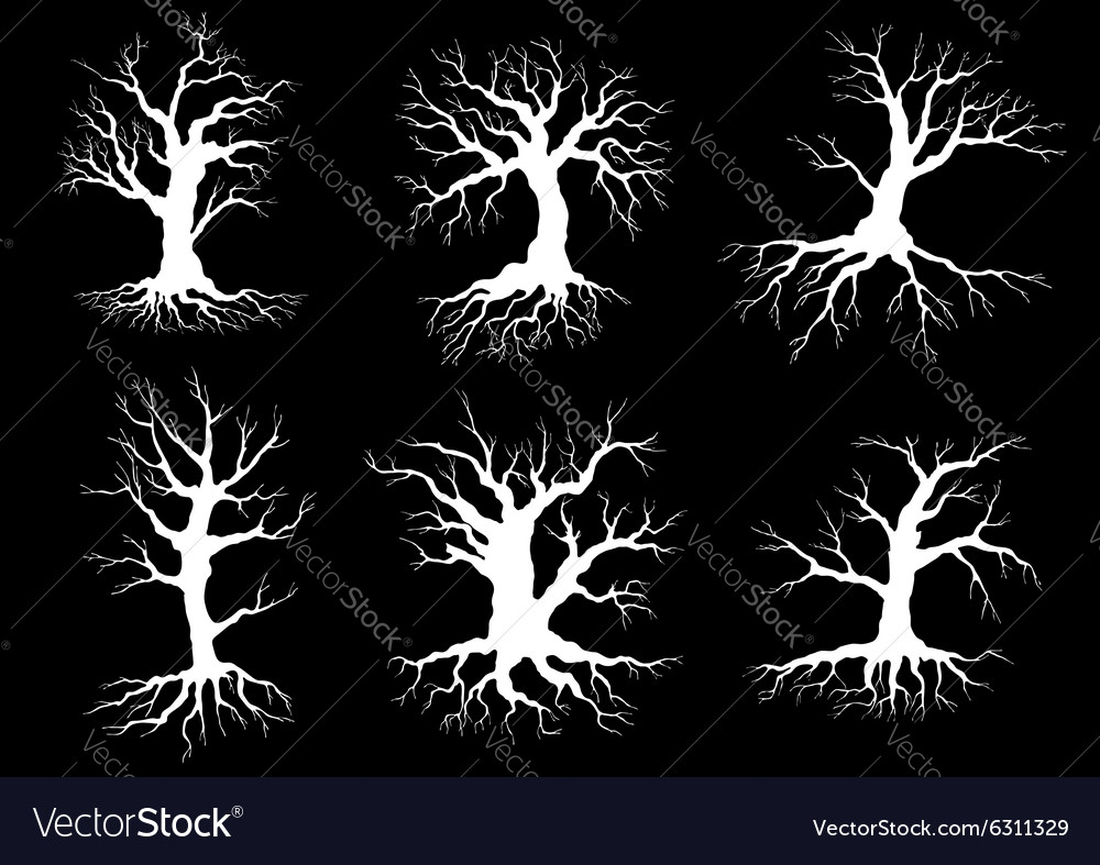 Dead old trees silhouettes with roots vector