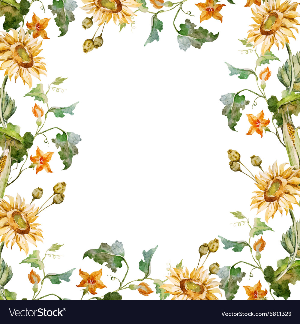 Sunflower frame vector