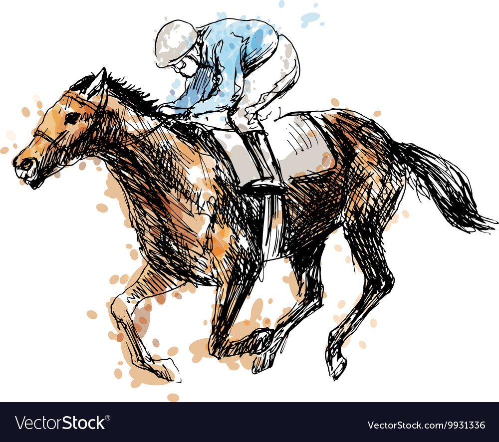 Colored hand drawing a rider with a horse vector