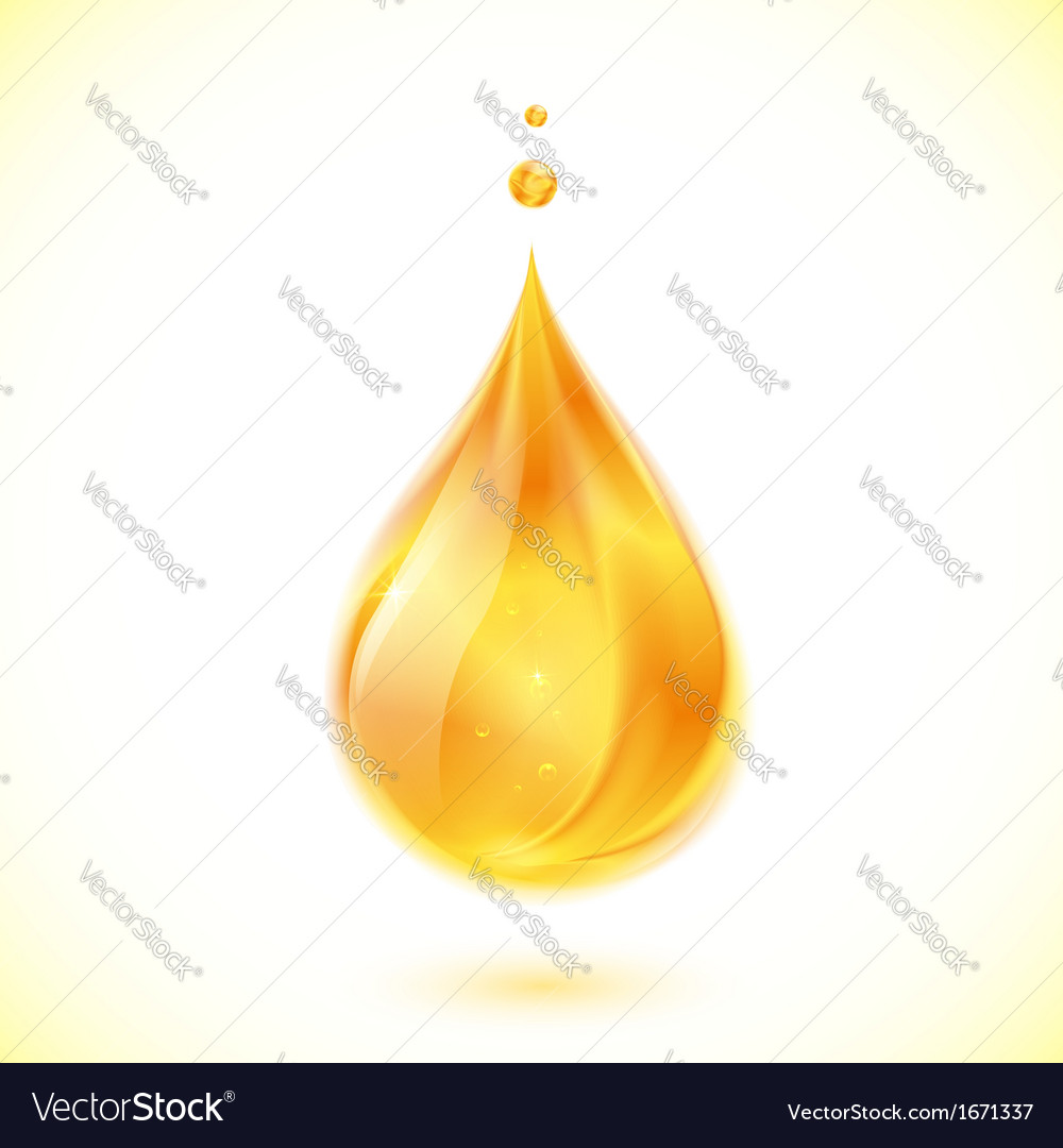 Realistic oil or honey drop vector