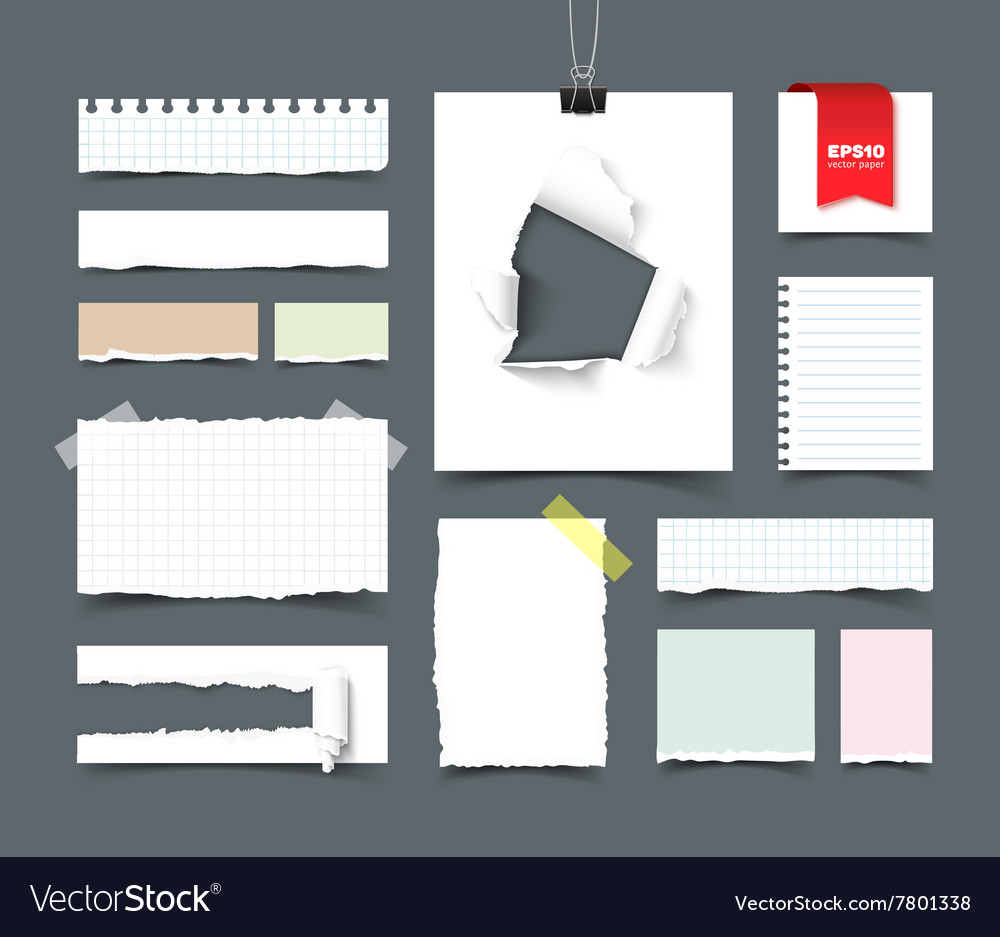 Big collection of office paper vector