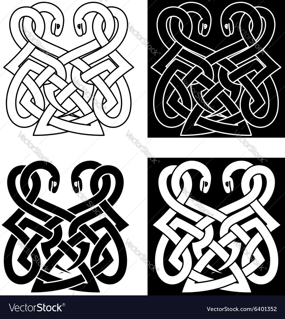 Celtic ornament with two intertwined snakes vector