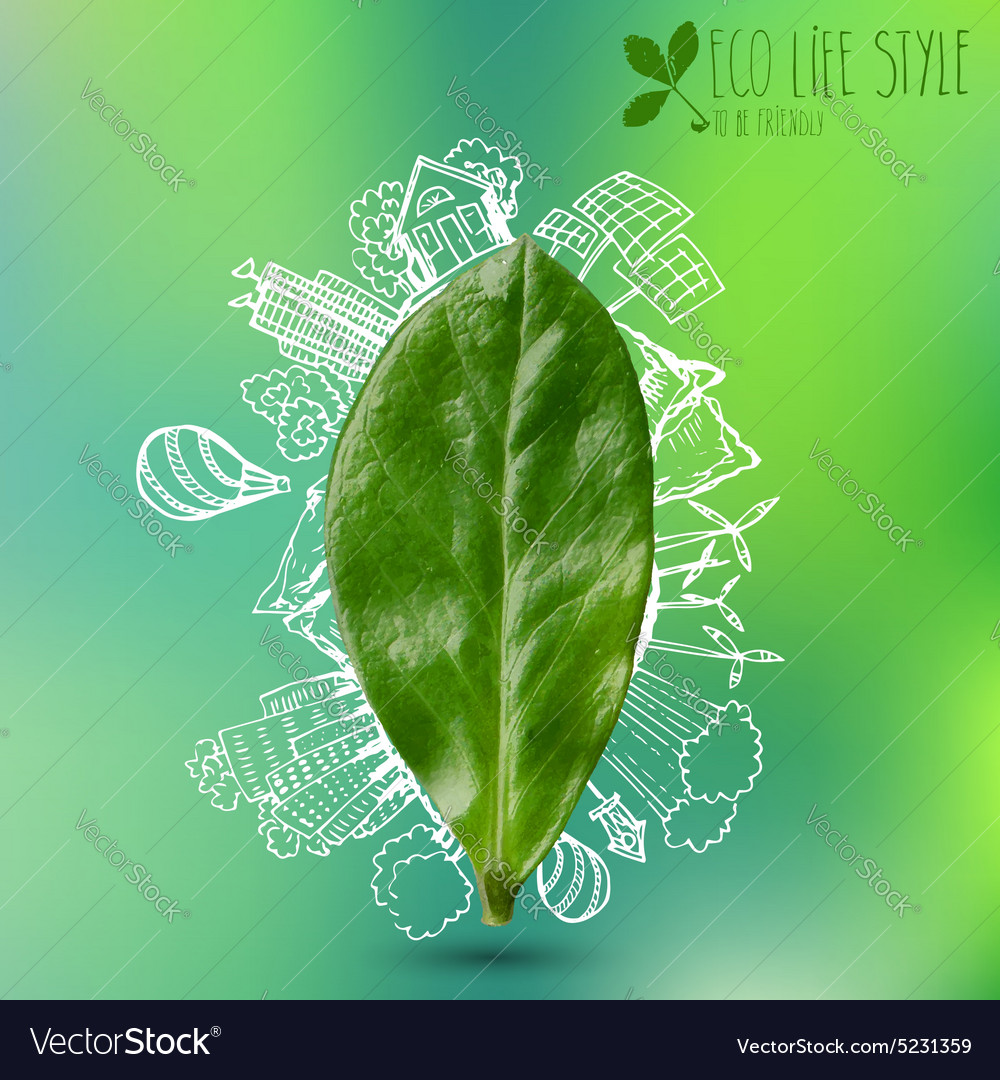 Green leave with doodles about eco lifestyle vector