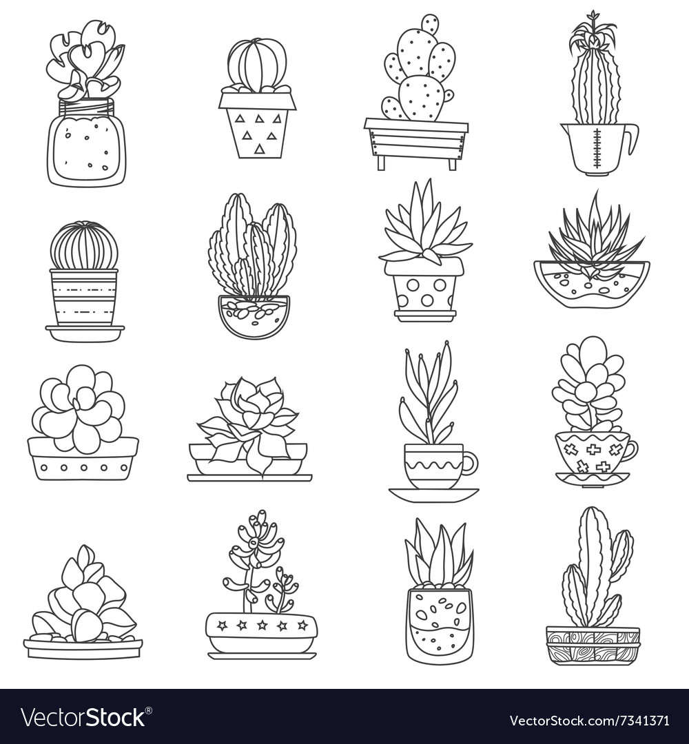 Cactus line icons set vector
