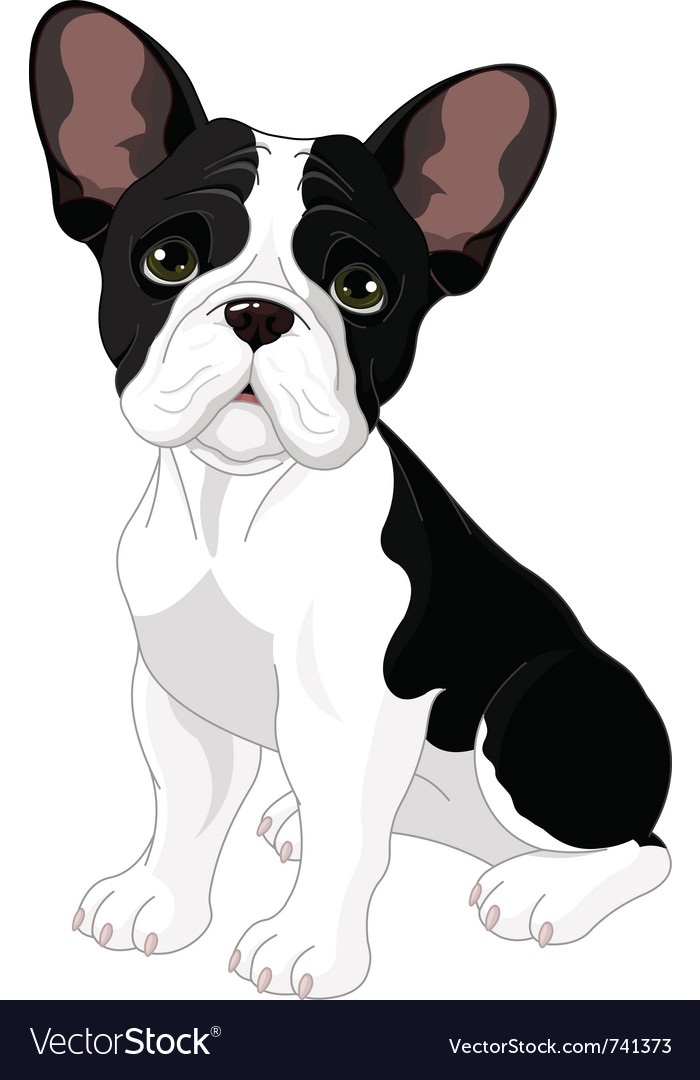 French bulldog vector