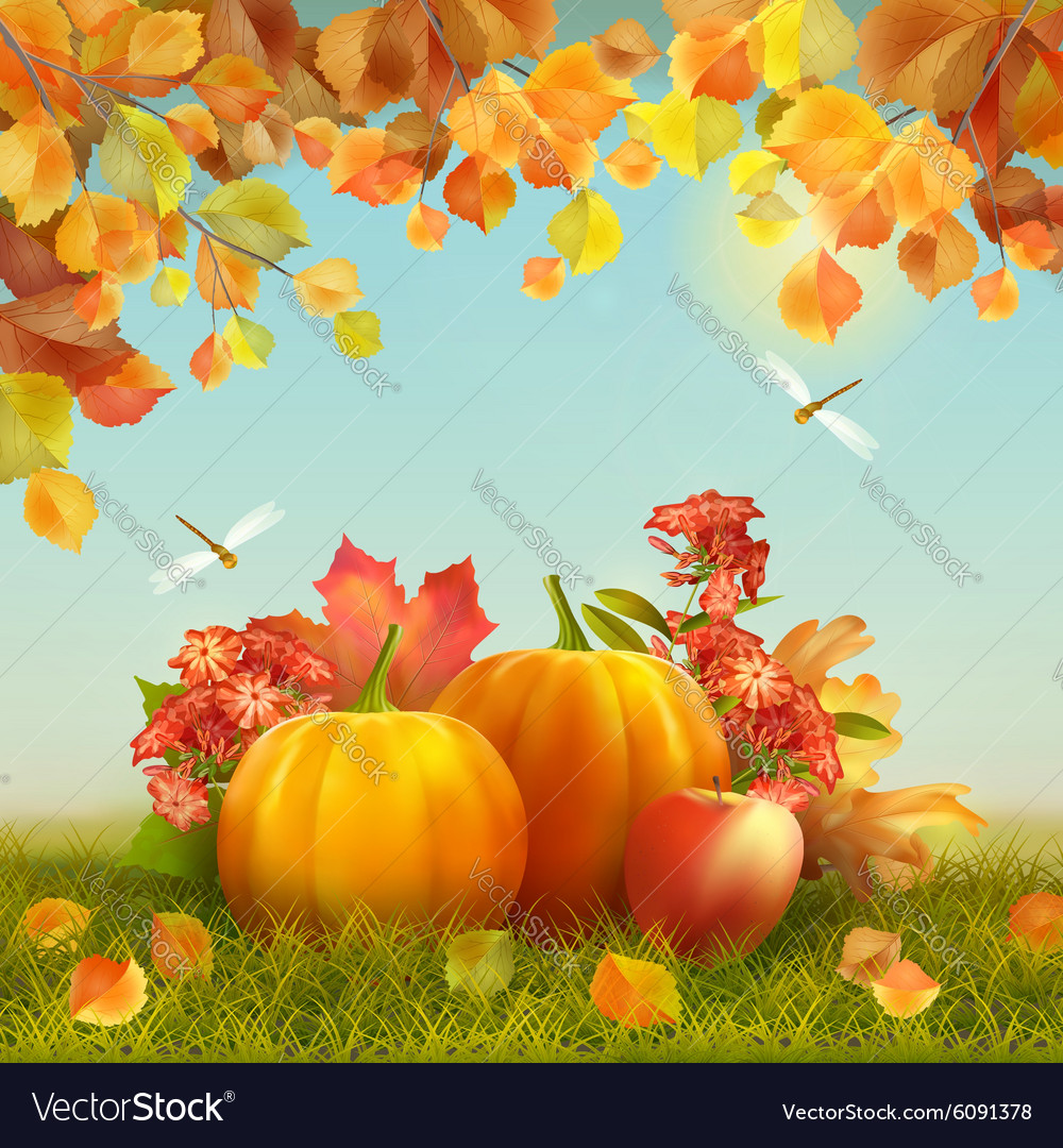 Autumn thanksgiving card vector