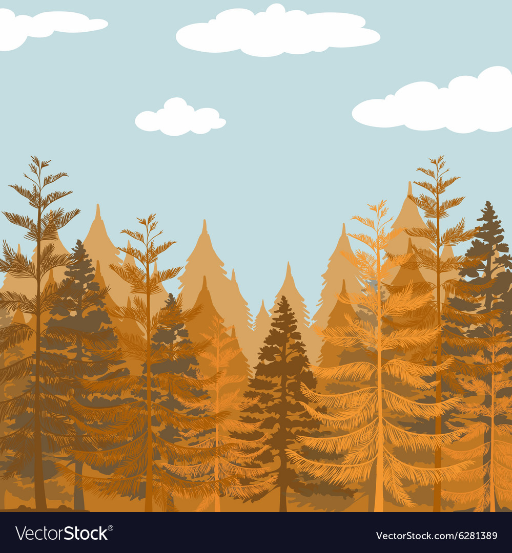 Pine forest at daytime vector