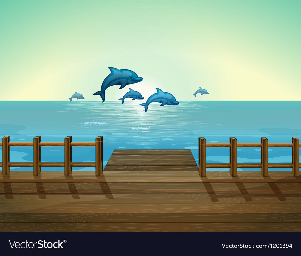 Six dolphins diving vector