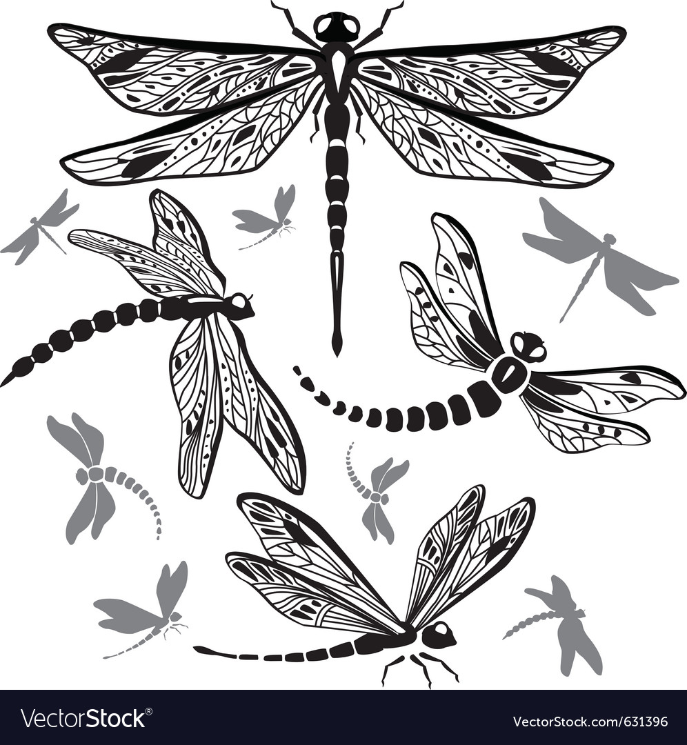 Set of decorative dragonflies vector