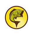 Largemouth Bass fish jumping vector image