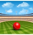 Stadium Of Cricket vector image