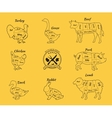 Set Schematic Vew of Animals for Butcher Shop vector image