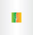 half spring and half autumn tree icon vector image
