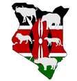 Big Five Kenya vector image