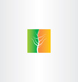 half spring and half autumn tree icon vector image