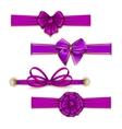 Set of elegant silk colored bows vector image