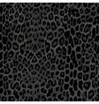 seamless black leopard print vector image