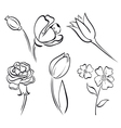 flower art line vector image