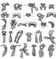 neckerchiefs vector image