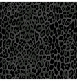 seamless black leopard print vector image