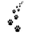footprints of dogs 3 vector image vector image