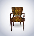 Tiger skin Chair vector image