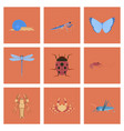 assembly flat bug snail butterfly dragonfly vector image