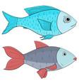 fish colored sketch vector image