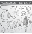 sketch drawing set of vegetables vector image