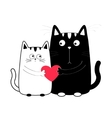 Cute cartoon black white cat boy and girl holding vector image