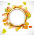 Place for text with autumn leaves vector image